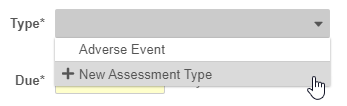 New Assessment Type option